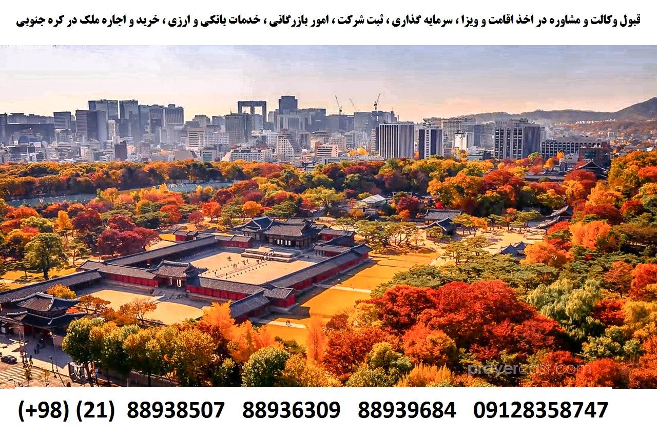اقامت کره جنوبی (4)