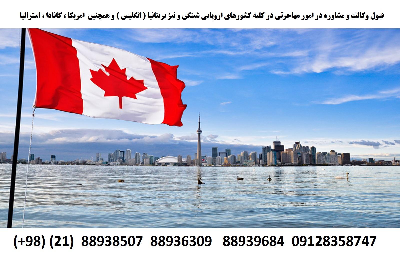 وکیل مهاجرتی در کلیه کشورها (1)